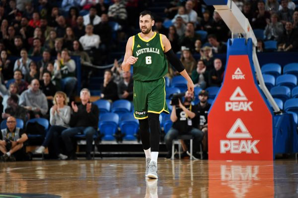 Andrew Bogut steps down from ABPA board